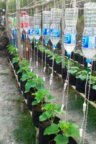 Bahçe Peyzaj Süsleme, Pet Şişe Kullanımı