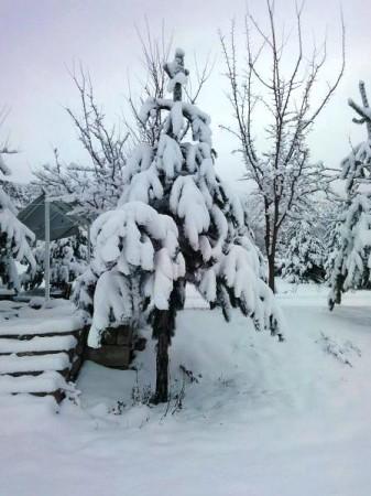 Çörekçiler Köyü Kış Manzaraları