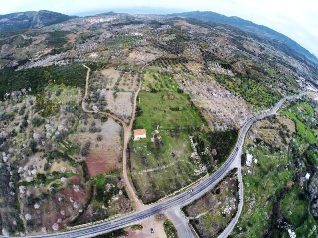 Muğla Datça Bahar Manzaraları 2016