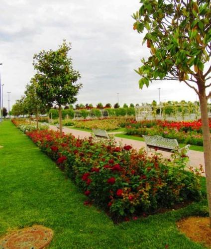 Park, Bahçe Peyzaj Resimleri 2019