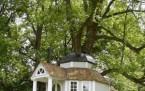 Orman, Ağaç Evler