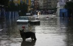 Yenisahra Sel Baskını