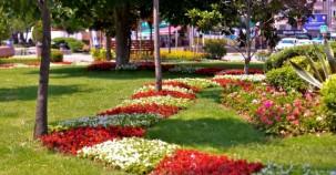 Maltepe Çiçek Açtı 2015