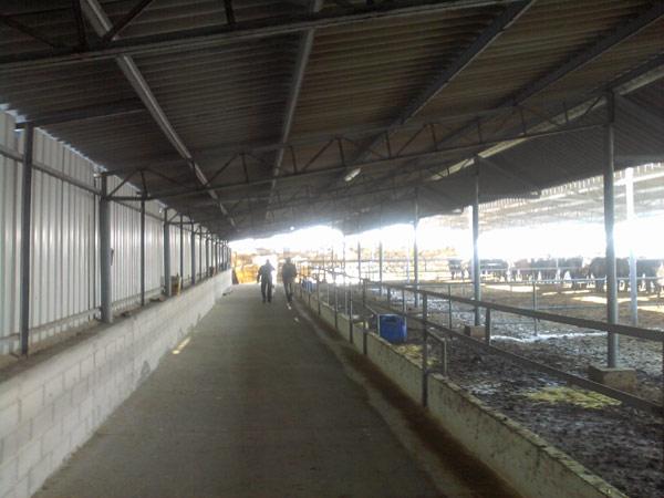 ALANSAN çelik çatı ferforje korkuluk Konya