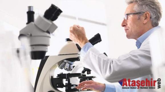 Kanser hücrelerine ''unutturmalı'' tedavi