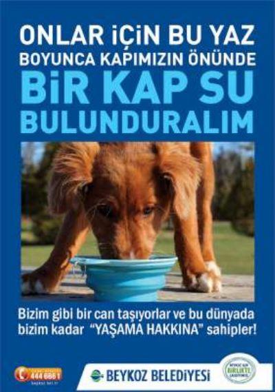 """KAPIMIZIN ÖNÜNDE 1 KAP SU BULUNDURALIM"""" KAMPANYASI BAŞLADI"""