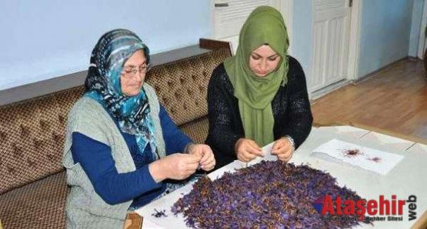 Safran Ekti, Hem Okudu Hem Ailesine Destek Sağladı