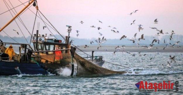 """Balıkçılar bu gece """"vira bismillah"""" diyecek"""