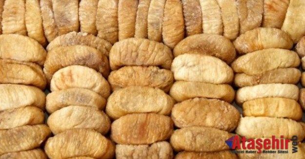 Kuru incir ihracatı 250 milyon doları aştı