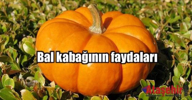 BAL KABAĞI YE GÖZLERİNİ KORU!