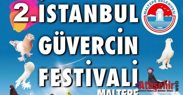 "Maltepe'de ""Güvercin Festivali"""