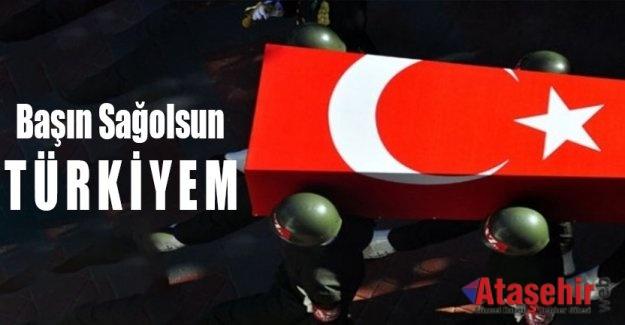 Başın Sağolsun Türkiyem