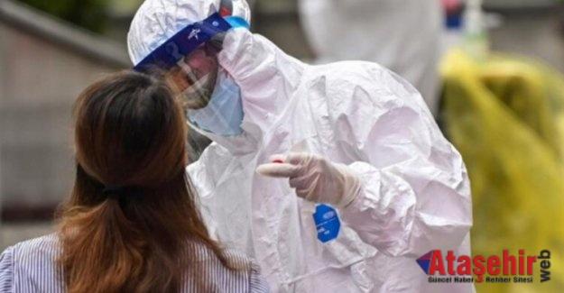 ABD'nin virüs danışmanı ilk kez konuşacak