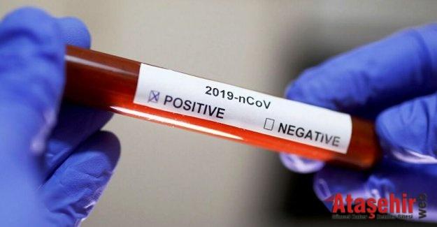 Süper taşıyıcı' tam 46 kişiye koronavirüs bulaştırmış
