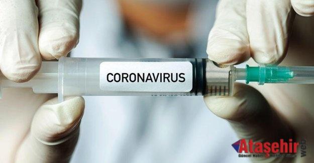 Koronavirüs aşısında son gelişmeler