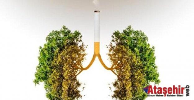 Sigara İçen Her 4 Kişiden 1'inde KOAH Var