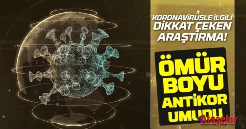 Koronaya karşı ömür boyu antikor