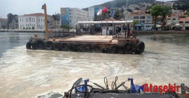 Marmara'nın yeni sorunu deniz salyası