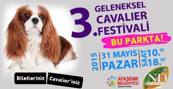 3. Geleneksel Cavalier Festivali