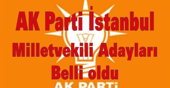 AK Parti İstanbul Milletvekili Adayları