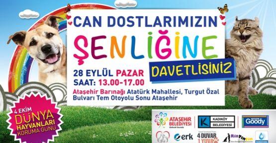 """Ataşehir'de """"Can Dostlar"""" Buluşuyor."""