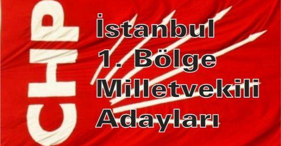 CHP İstanbul 1. bölge Milletvekili adayları