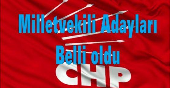 CHP'nin milletvekili adaylarının tam listesi