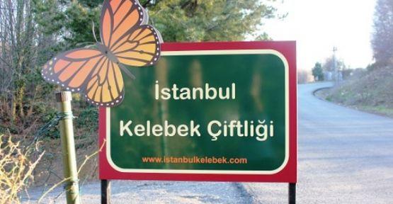 İstanbul'da bir cennet köşesi