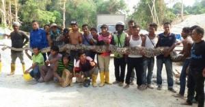 Dünyanın en uzun yılanı öldü