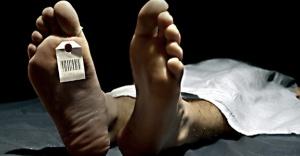 Ölüm sayısı 2015 yılında %3,6 arttı