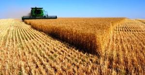 Tarım Ürünleri Üretici Fiyat Endeksi, Haziran 2016