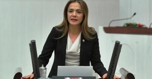 """CHP'Lİ İLGEZDİ, """"PROJE OKULLARI""""NI İNSAN HAKLARINI İNCELEME KOMİSYONUNA TAŞIDI"""