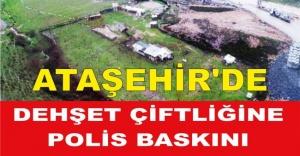 Ataşehir#039;de Dehşet Çiftliğine...