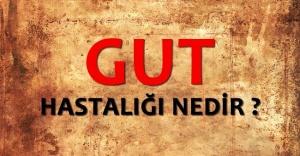 Genç erkeklerde en çok rastlanan hastalık; GUT