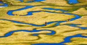 Sarı Kareler Fotoğraf Yarışması'nda ödüller sahiplerini buldu
