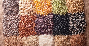"""""""Hedefimiz 1.5 Milyon Ton Sertifikalı Tohum İle Dünya Tohum Sektöründe İlk 5'te Yer Almak"""""""