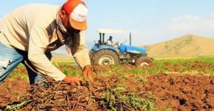 Covid-19 çiftçileri tekrar milletin efendisi yaptı