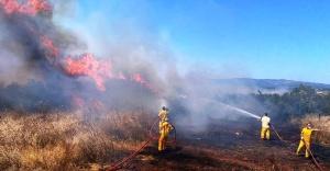 Ormanda ateş yakmak yasaktır