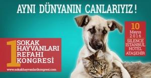 1. Sokak Hayvanları Refahı Kongresi