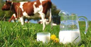 Süt ve Süt Ürünleri Üretimi, Nisan 2016