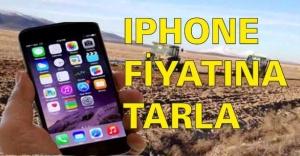 IPHONE FİYATINA TARLA