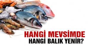 Hangi balık türleri hangi aylarda yenir