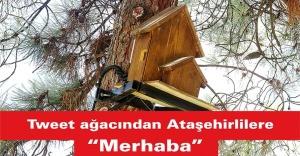 """Tweet ağacından Ataşehirlilere """"merhaba"""""""