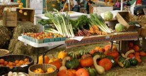 Türkiye 68 ülkeye organik ürün ihraç etti