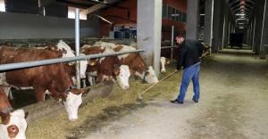 TKDK desteği ile  Çiftlik Sahibi Oldu