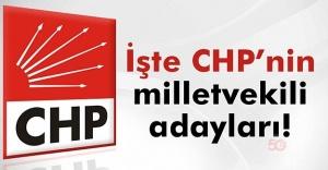 CHP Milletvekili Aday Listesi