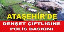 Ataşehir'de Dehşet Çiftliğine polis baskını
