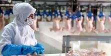 Beyaz Et Sektöründe Kadın İstihdam Oranı