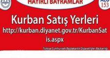Anadolu Yakası Kurban Kesimi ve Satış Yerleri