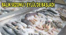 Balık Sezonu 1 Eylülde Başlıyor
